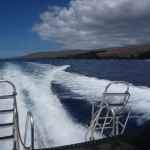 From the dive boat looking at Lanai
