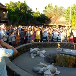 The crowd at the luau